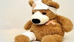 injured bear with bandages